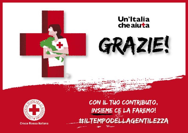 peli red cross 9600 light donation