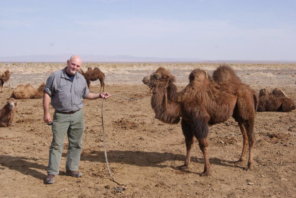 pelican discover survival story randy toelle gobi desert camel