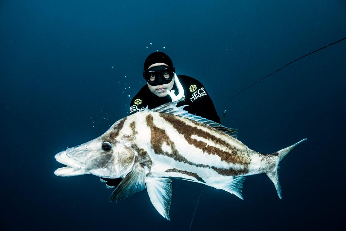peli pro team david ochoa underwater photography