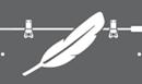 pelican light lift case logo